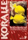 E-Book Doktorfische im Meerwasseraquarium