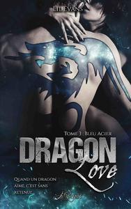 Livre numérique Dragon Love, tome 3