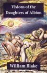 Libro electrónico Visions of the Daughters of Albion (Illuminated Manuscript with the Original Illustrations of William Blake)