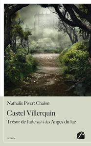 Livre numérique Castel Villerquin