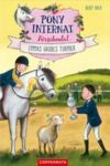 Livre numérique Pony-Internat Kirschental (Bd. 2)
