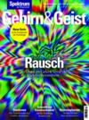 Electronic book Gehirn&Geist 1/2019 Rausch