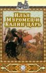 Libro electrónico Илья Муромец и Калин-царь