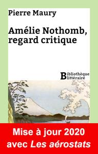 Livre numérique Amélie Nothomb, regard critique