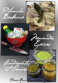 Livre numérique Plancha, Barbecue : Marinades, Epices, Condiments et Sauces