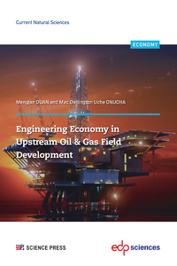 Electronic book Engineering Economy in Upstream Oil & Gas Field Development