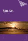 Livre numérique Soleil gris