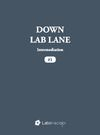 Electronic book Down Lab Lane: Intermediation