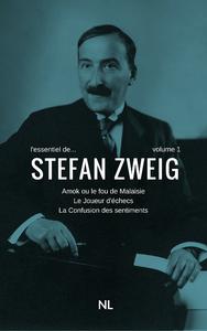 Livre numérique L'essentiel de Stefan Zweig, volume 1