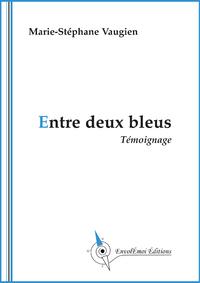 Livre numérique Entre deux bleus