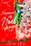Livre numérique L'inconnu de Noël