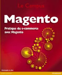 Livre numérique Magento
