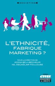 Livre numérique L'éthnicité, fabrique marketing ?