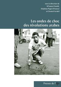 Livre numérique Les ondes de choc des révolutions arabes