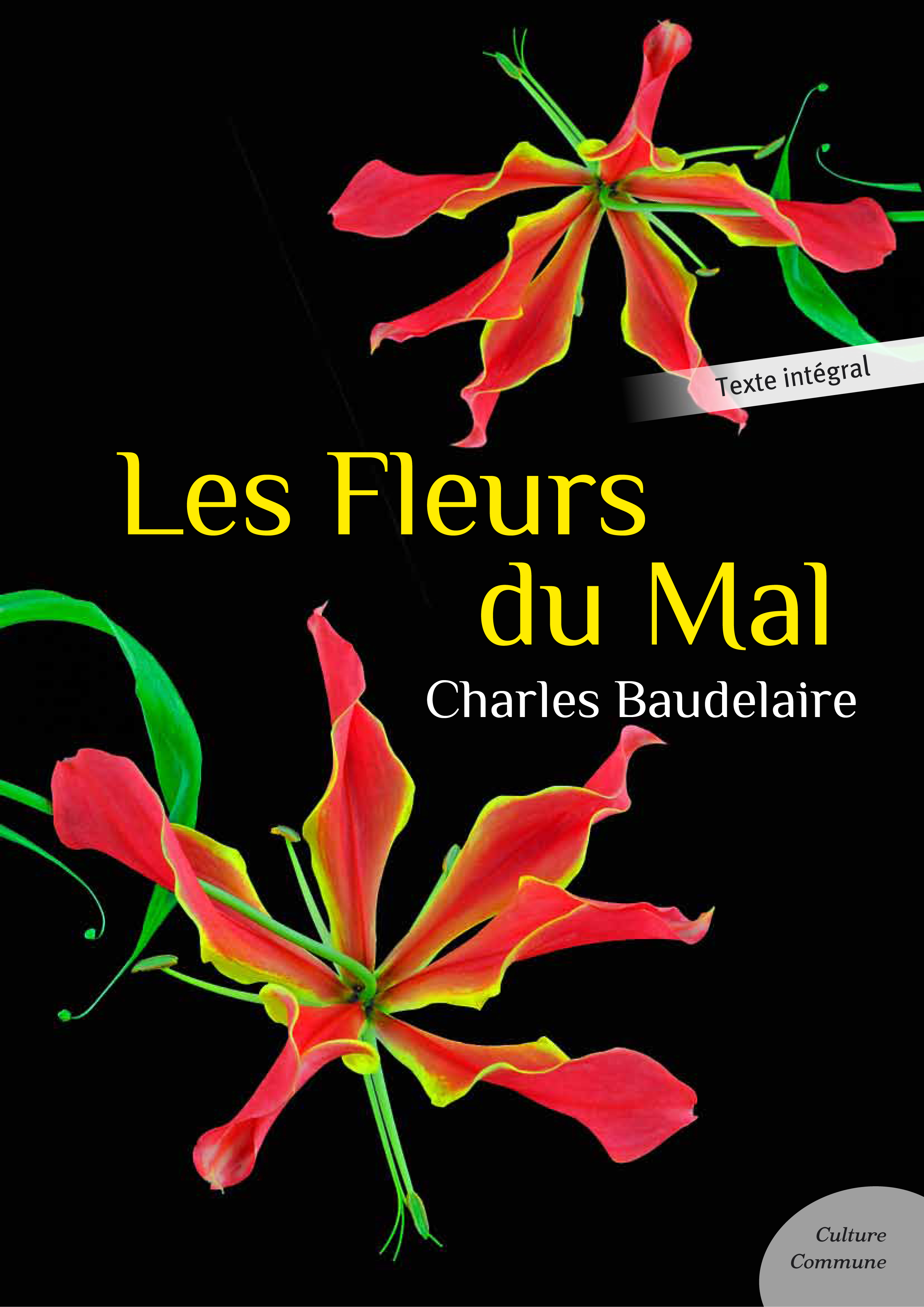 an analysis of les fleurs du mal by charles baudelaire Three poems from les fleurs du mal ~ charles baudelaire ~ four photogravures by henri cartier-bresson.