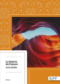 Livre numérique La Galerie du Canyon
