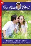 Livre numérique Der kleine Fürst 198 – Adelsroman