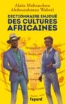 Livre numérique Dictionnaire enjoué des cultures africaines