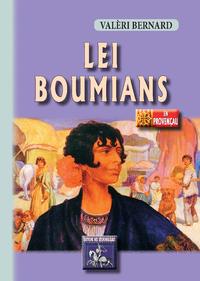 E-Book Lei Boumians
