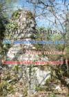 E-Book Amazoniens... Ne sommes-nous pas Nous-mêmes Indiens des plus rares ?