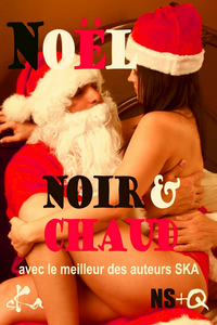 Electronic book Noël Noir & Chaud