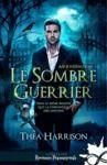 Electronic book Le sombre guerrier