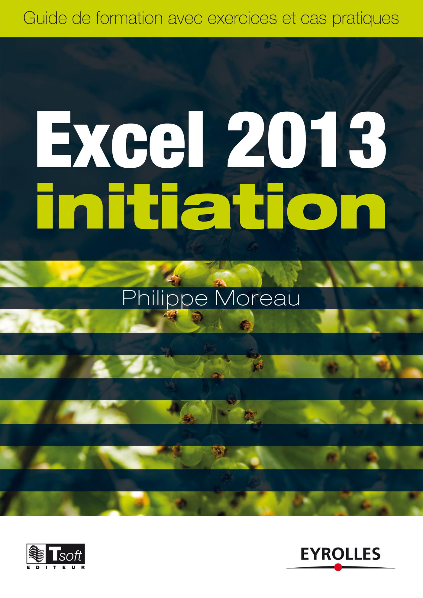 Ebook Excel 2013 - Initiation - Guide de formation avec exercices et cas pratiques par Philippe ...