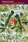 Livre numérique Pourquoi les oiseaux meurent
