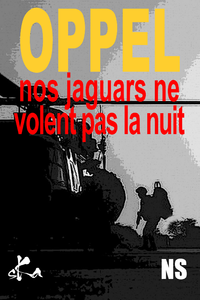 Livre numérique Nos Jaguars ne volent pas la nuit
