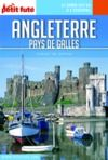 Livre numérique ANGLETERRE / PAYS DE GALLES 2018 Carnet Petit Futé