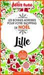 Electronic book SHOPPING DE NOËL À LILLE 2020 Petit Futé