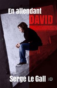 Livre numérique En attendant David