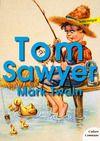 Livre numérique Les aventures de Tom Sawyer