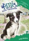 Livre numérique Mes amis de la forêt enchantée - tome 10 : La surprise d'Eva Truffe-Flair