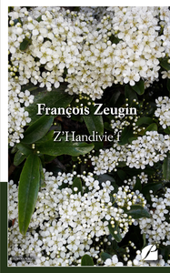 Livre numérique Z'Handivie'f