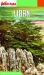 Electronic book LIBAN 2020 Petit Futé