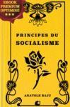 Livro digital Principes du socialisme