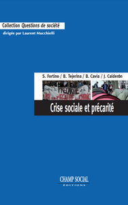 Livre numérique Crise sociale et précarité