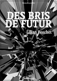 Livre numérique Des bris de futur (version intégrale)
