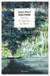 Livre numérique Contes et légendes du Brésil