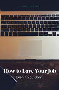 Electronic book How to Love Your Job
