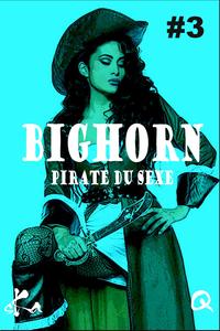 Livre numérique BigHorn #3
