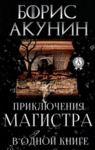 Electronic book Приключения магистра в одной книге