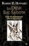 Livre numérique Les Guerriers du Valhalla