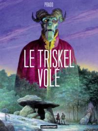 Livre numérique Le Triskel volé