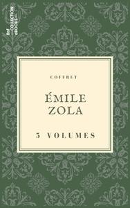 Livre numérique Coffret Émile Zola
