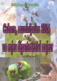 Livre numérique Cahors, municipales 2014: un enjeu départemental majeur