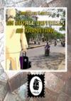 Libro electrónico Un Voyage d'Affaires au Karnataka