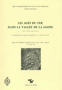 Livre numérique Les âges du fer dans la vallée de la Saône (VIIe-Iersiècles avant notre ère)