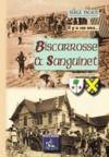 Livre numérique Il y a 100 ans, Biscarrosse & Sanguinet à travers la carte postale